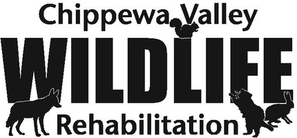 Chippewa Valley Wildlife Rehabilitation Center